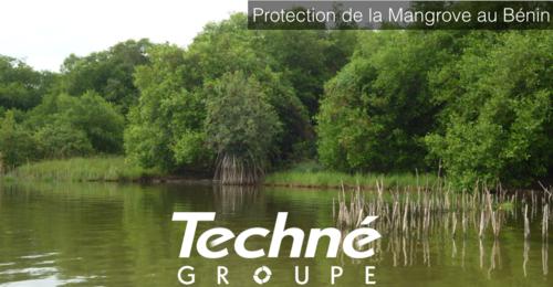 Techne-Mangrove-Benin-RSE