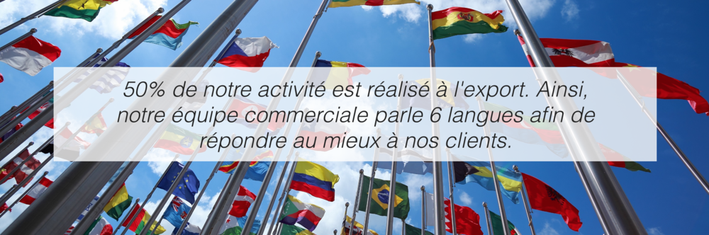 International-Client-Techne-Multilingue-2