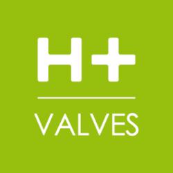 Logo H Valves