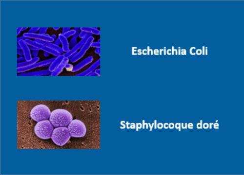Efficacite biocide